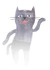 webbyrå katt